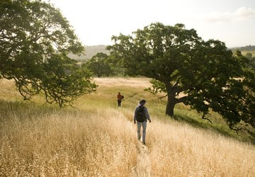 Stanford hills and hikers